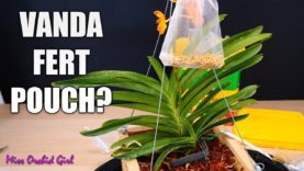 Join me on a Vanda Orchid day! – basketting & making a fertilizer pouch!