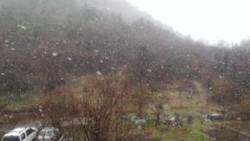 Snowing weather – just one more reason to stay in your houses